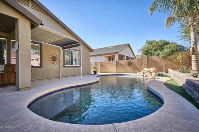14972 W Bloomfield Road, Surprise, AZ 85379 (MLS #5707619) :: The Everest Team at My Home Group
