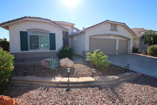 17649 N Goldwater Drive, Surprise, AZ 85374 (MLS #5707733) :: Desert Home Premier
