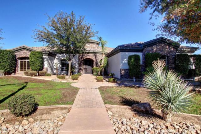 17942 W San Juan Avenue, Litchfield Park, AZ 85340 (MLS #5708141) :: Private Client Team