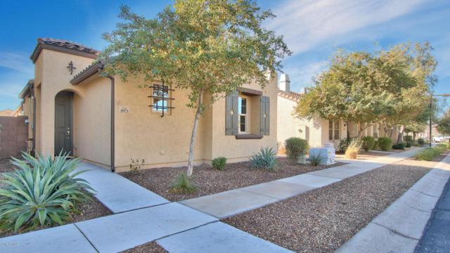 8975 W Nicolet Avenue, Glendale, AZ 85305 (MLS #5708268) :: Occasio Realty