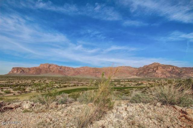3094 S Petroglyph Trail, Gold Canyon, AZ 85118 (MLS #5708323) :: Kortright Group - West USA Realty