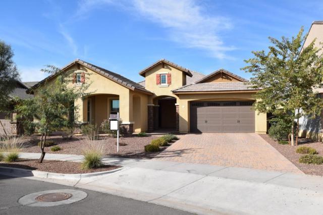 2240 N Beverly Place, Buckeye, AZ 85396 (MLS #5708472) :: Occasio Realty