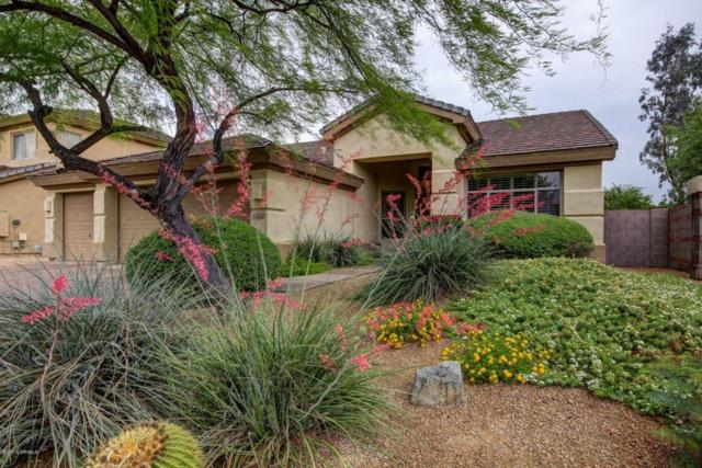 6516 E Marilyn Road, Scottsdale, AZ 85254 (MLS #5708571) :: Private Client Team