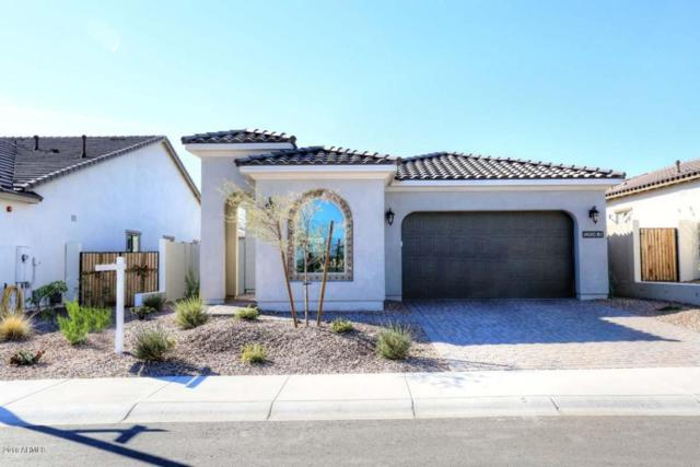 12083 W Roy Rogers Road, Peoria, AZ 85383 (MLS #5708692) :: The Worth Group