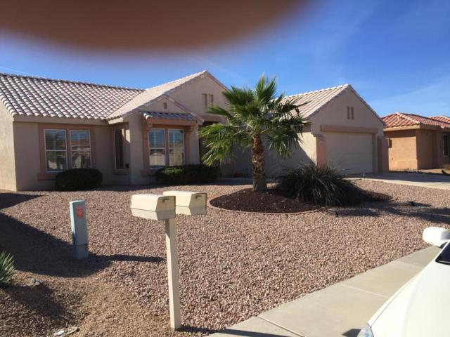 12907 W Caraway Drive, Sun City West, AZ 85375 (MLS #5708778) :: Desert Home Premier