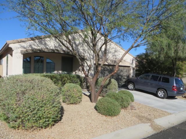 18286 E La Posada Court, Gold Canyon, AZ 85118 (MLS #5708877) :: Occasio Realty