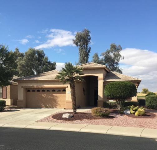 17430 N Fairway Drive, Surprise, AZ 85374 (MLS #5708941) :: Desert Home Premier