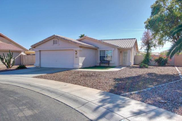 11671 W Owl Court, Surprise, AZ 85378 (MLS #5708991) :: The Everest Team at My Home Group