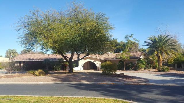 595 N Pajaro Lane, Litchfield Park, AZ 85340 (MLS #5709145) :: Ashley & Associates