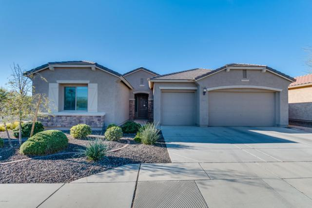 18205 W Butler Drive, Waddell, AZ 85355 (MLS #5709182) :: The AZ Performance Realty Team