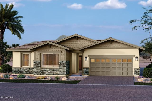 13776 W Harvest Avenue, Litchfield Park, AZ 85340 (MLS #5709281) :: Ashley & Associates