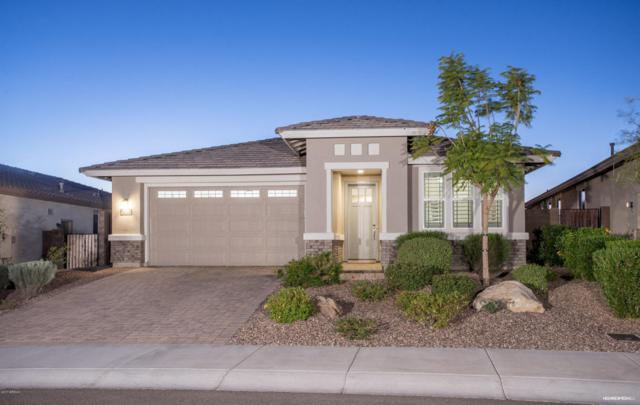 30788 N 138TH Avenue, Peoria, AZ 85383 (MLS #5709404) :: The Worth Group