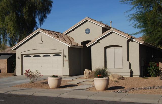 12750 W Merrell Street, Avondale, AZ 85392 (MLS #5709662) :: Kortright Group - West USA Realty