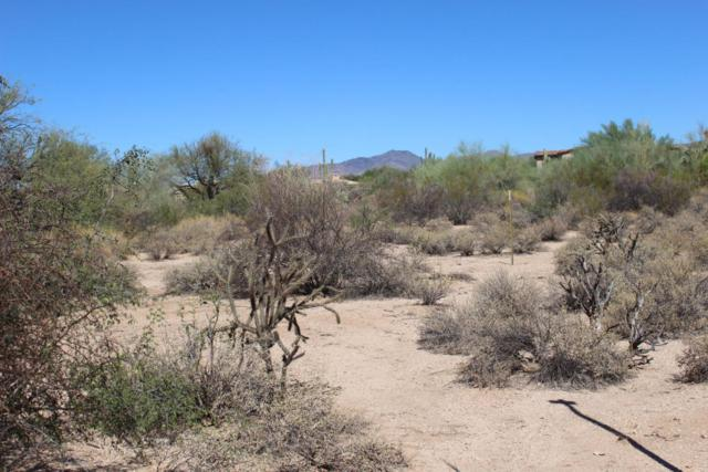 33243 N Northstar Circle, Scottsdale, AZ 85266 (MLS #5709739) :: Occasio Realty