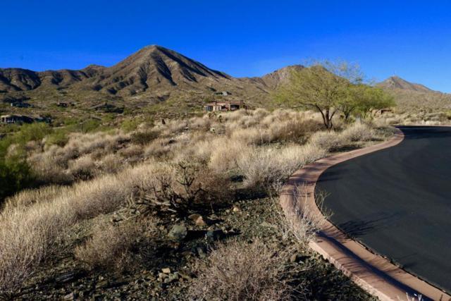 14247 E Coyote Court, Fountain Hills, AZ 85268 (MLS #5709744) :: Phoenix Property Group