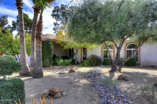 6233 E Acoma Drive, Scottsdale, AZ 85254 (MLS #5709895) :: Private Client Team