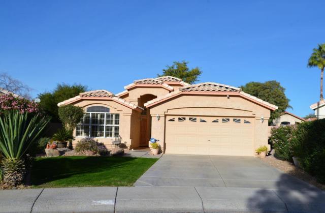 2242 E Donald Drive, Phoenix, AZ 85024 (MLS #5709920) :: Private Client Team
