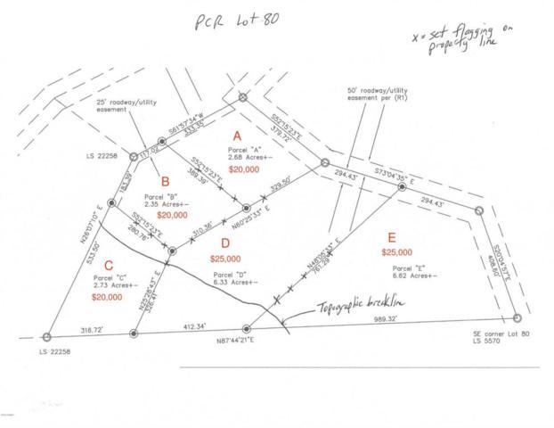 0 N Cow Creek Lot 80 Parcel B Road, Morristown, AZ 85342 (MLS #5709939) :: Private Client Team