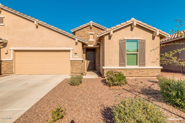 41686 W Caliente Drive, Maricopa, AZ 85138 (MLS #5709947) :: Yost Realty Group at RE/MAX Casa Grande