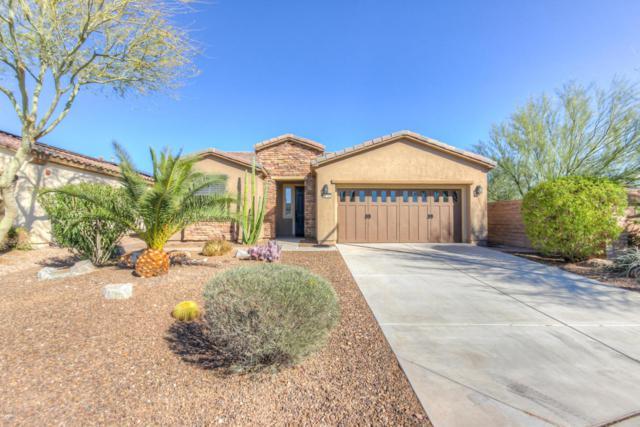26765 N 126TH Lane, Peoria, AZ 85383 (MLS #5709957) :: The Laughton Team