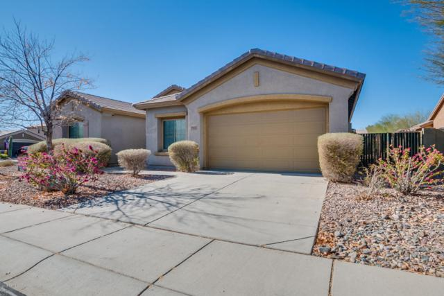 39606 N Belfair Way, Anthem, AZ 85086 (MLS #5709987) :: The Daniel Montez Real Estate Group