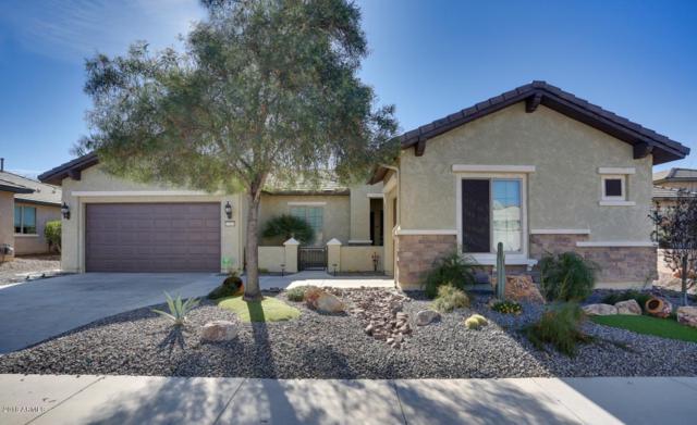 27005 W Yukon Drive, Buckeye, AZ 85396 (MLS #5709997) :: Desert Home Premier