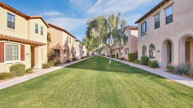 3470 S Swan Drive, Gilbert, AZ 85297 (MLS #5710109) :: Occasio Realty