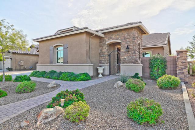2437 E Orleans Drive, Gilbert, AZ 85298 (MLS #5710141) :: Occasio Realty