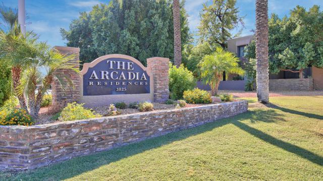 3825 E Camelback Road #166, Phoenix, AZ 85018 (MLS #5710317) :: Sibbach Team - Realty One Group