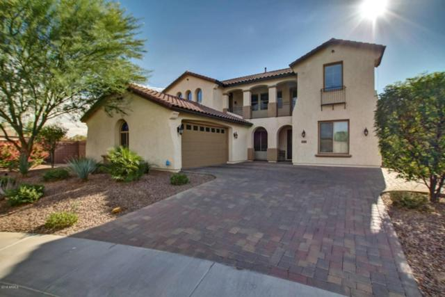 4148 S Beverly Court, Chandler, AZ 85248 (MLS #5710340) :: Private Client Team