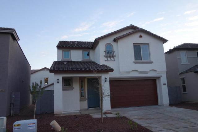 12021 W Taylor Street, Avondale, AZ 85323 (MLS #5710344) :: Brent & Brenda Team