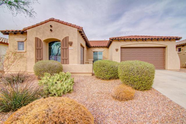3354 W Summit Walk Drive, Anthem, AZ 85086 (MLS #5710486) :: Desert Home Premier