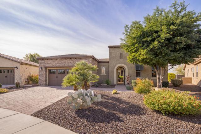 28160 N 130TH Glen, Peoria, AZ 85383 (MLS #5710494) :: The Laughton Team