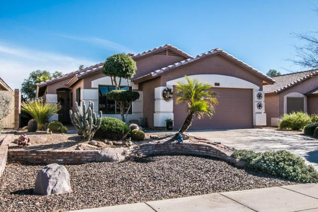 3691 S Conestoga Road, Apache Junction, AZ 85119 (MLS #5710546) :: Yost Realty Group at RE/MAX Casa Grande