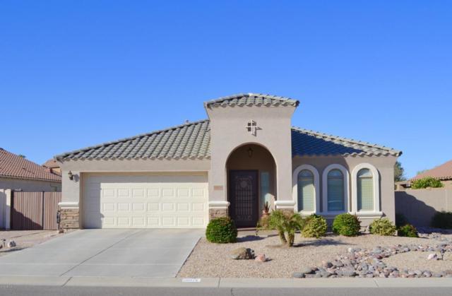 28076 N White Stone Way, San Tan Valley, AZ 85143 (MLS #5710606) :: Yost Realty Group at RE/MAX Casa Grande
