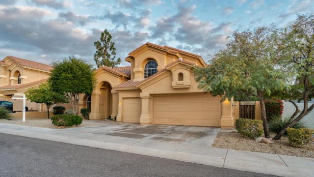 1361 E Desert Flower Lane, Phoenix, AZ 85048 (MLS #5710643) :: Lux Home Group at  Keller Williams Realty Phoenix