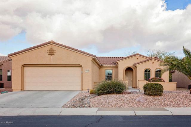 20013 N Organ Pipe Drive, Surprise, AZ 85374 (MLS #5710782) :: Desert Home Premier