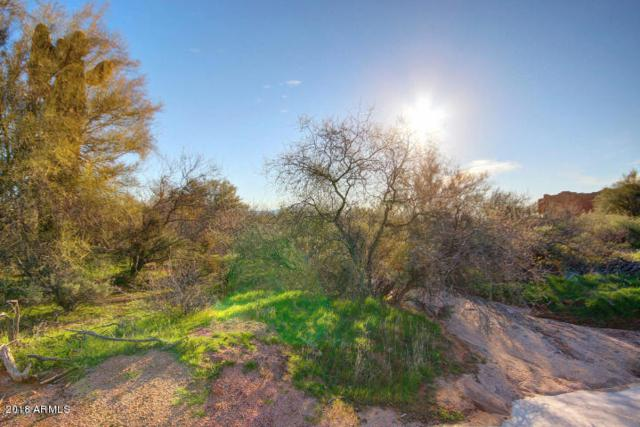 285XX N 158th Street, Scottsdale, AZ 85262 (MLS #5710797) :: Desert Home Premier
