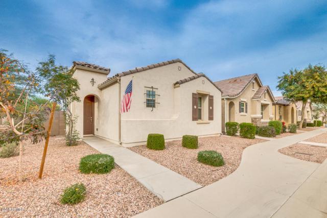 9030 W Nicolet Avenue, Glendale, AZ 85305 (MLS #5710874) :: The Laughton Team