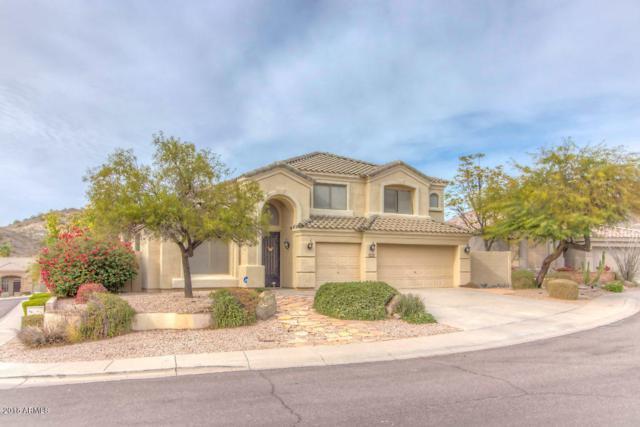 356 E Briarwood Terrace, Phoenix, AZ 85048 (MLS #5710938) :: Lux Home Group at  Keller Williams Realty Phoenix