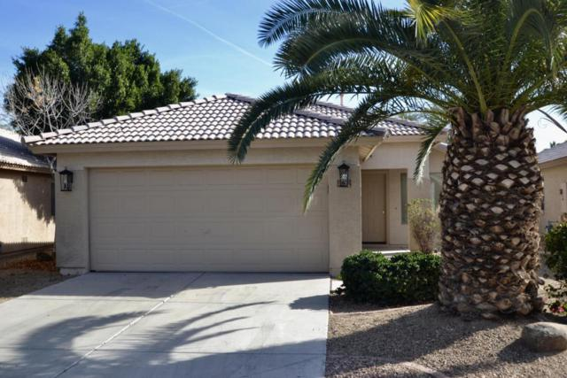 1965 N 107TH Drive, Avondale, AZ 85392 (MLS #5711055) :: Brent & Brenda Team