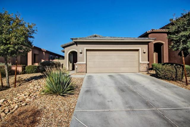 20216 W Desert Bloom Street, Buckeye, AZ 85326 (MLS #5711062) :: Brent & Brenda Team