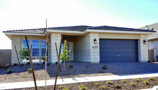 14411 W Windrose Drive, Surprise, AZ 85379 (MLS #5711109) :: The Laughton Team