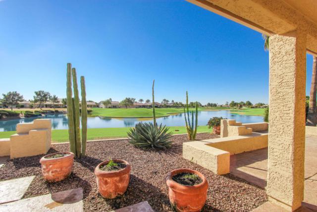 9105 E Crystal Drive, Sun Lakes, AZ 85248 (MLS #5711160) :: Brent & Brenda Team