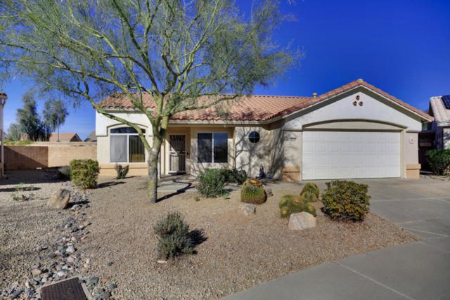 22414 N Cochise Lane, Sun City West, AZ 85375 (MLS #5711165) :: Brent & Brenda Team