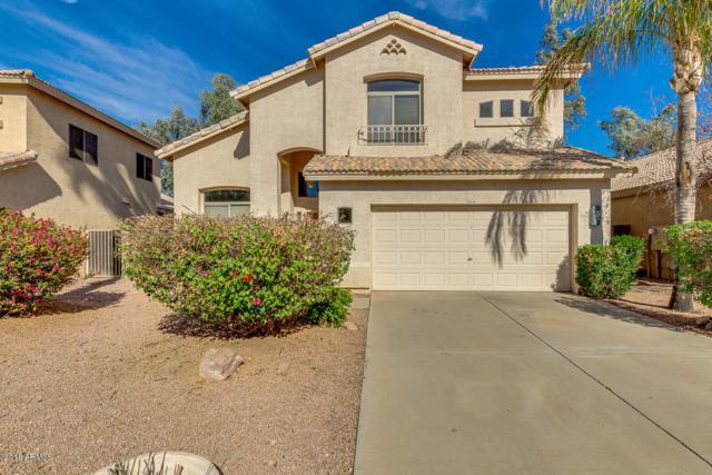 1474 E Sunrise Way, Gilbert, AZ 85296 (MLS #5711170) :: Brent & Brenda Team