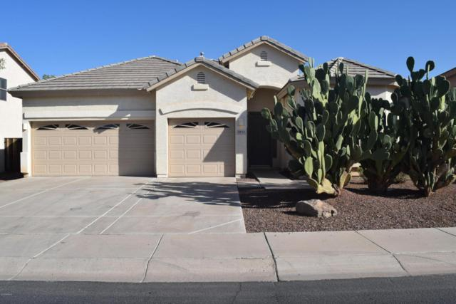 9713 S Reidar Road, Laveen, AZ 85339 (MLS #5711171) :: Brent & Brenda Team