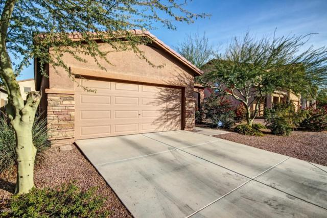 7340 W St Catherine Avenue, Laveen, AZ 85339 (MLS #5711178) :: Sibbach Team - Realty One Group