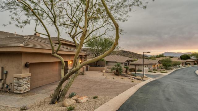 407 E Desert Wind Drive, Phoenix, AZ 85048 (MLS #5711207) :: Lux Home Group at  Keller Williams Realty Phoenix