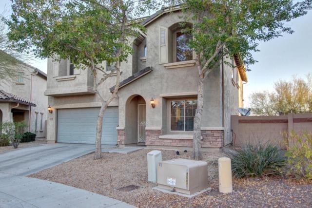 2512 W Lucia Drive, Phoenix, AZ 85085 (MLS #5711268) :: Occasio Realty
